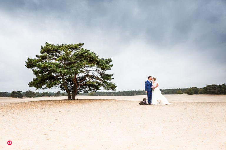 bruidsfotografie Utrecht Huizen / Soest – Soesterduinen Karin & Jori