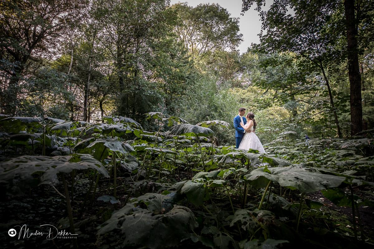 trouwfotograaf-rotterdam-heerenhuys-dudok-in-het-park